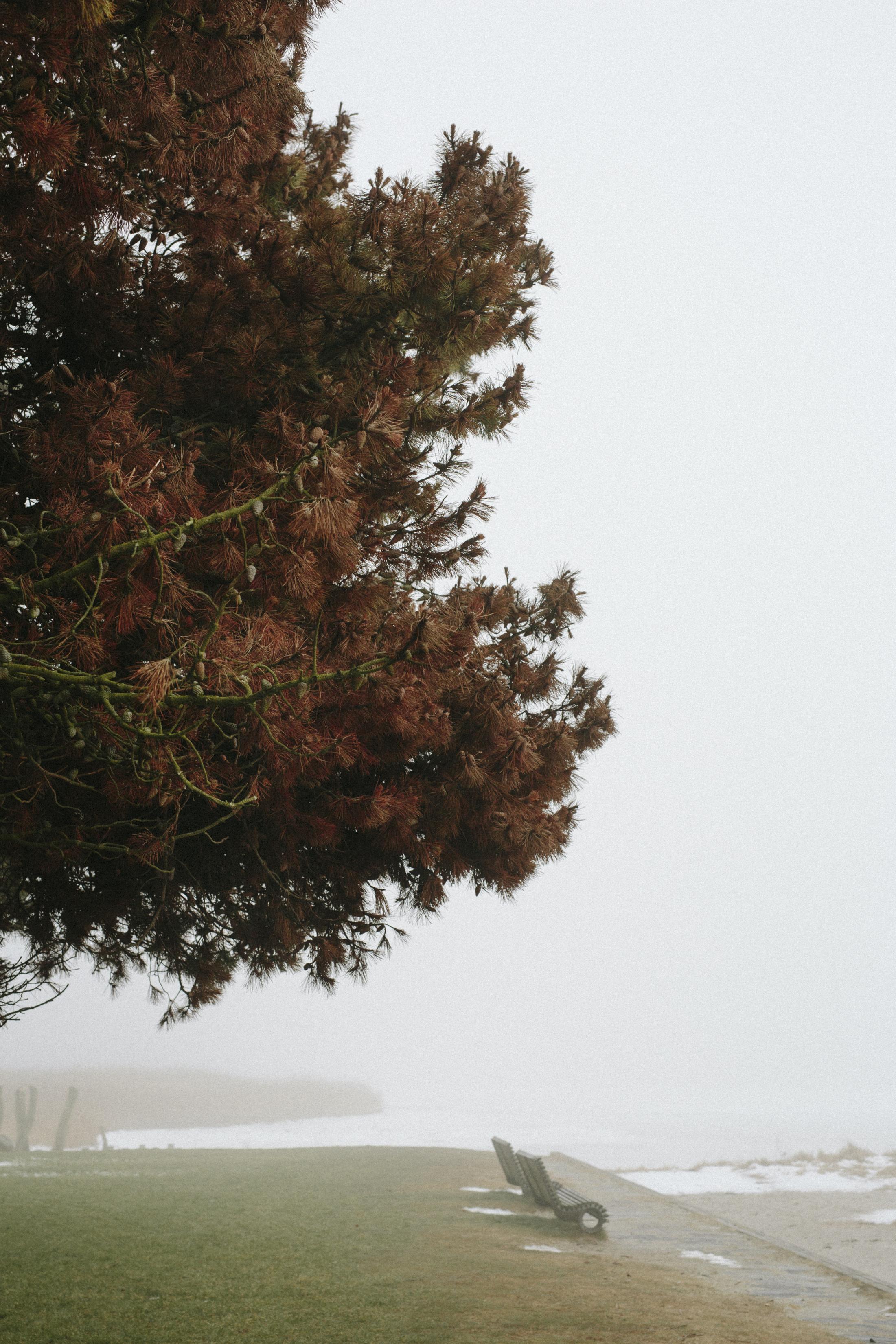 tåge_vejle_marts_fotograf Tine Hvolby_103