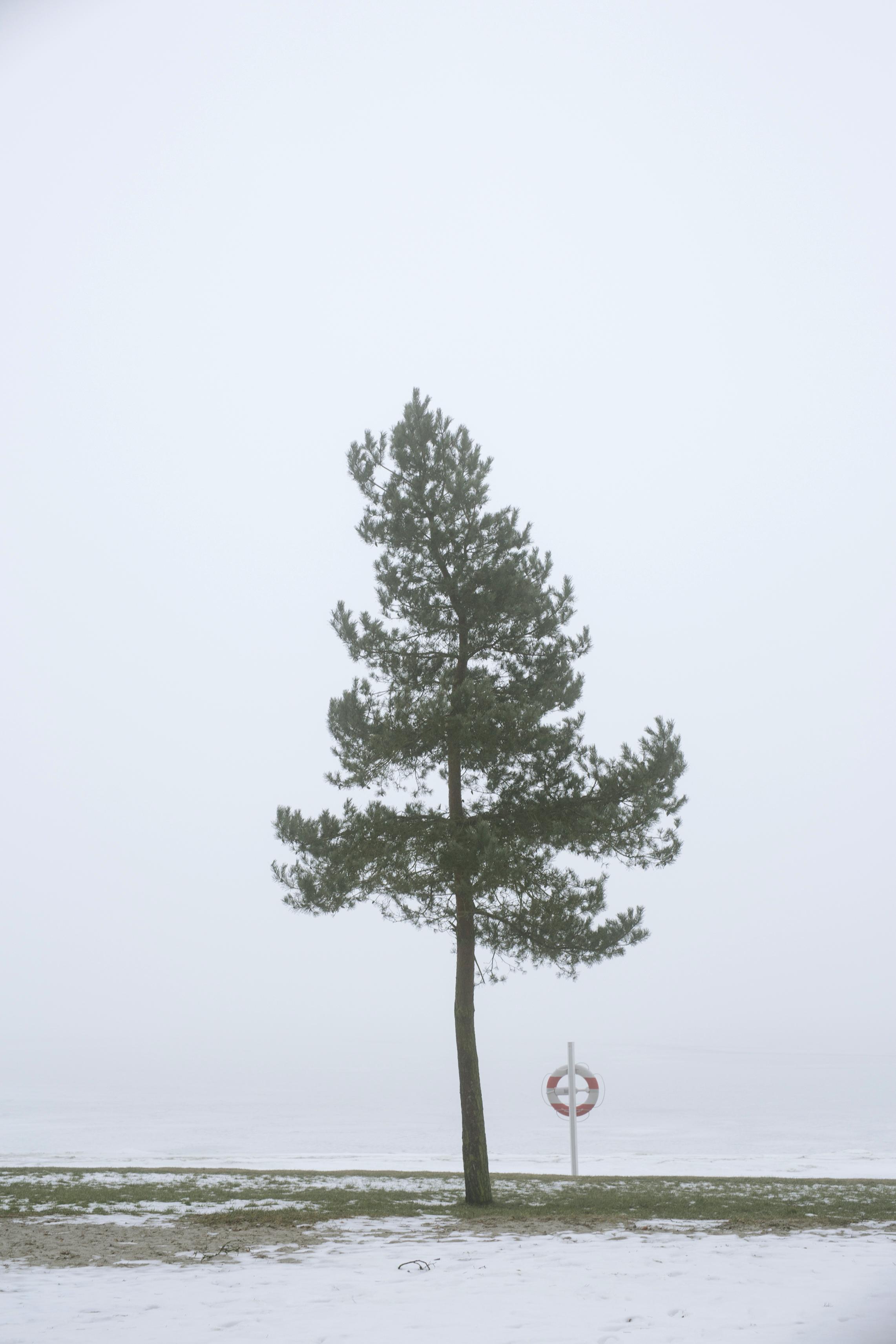 tåge_vejle_marts_fotograf Tine Hvolby_112