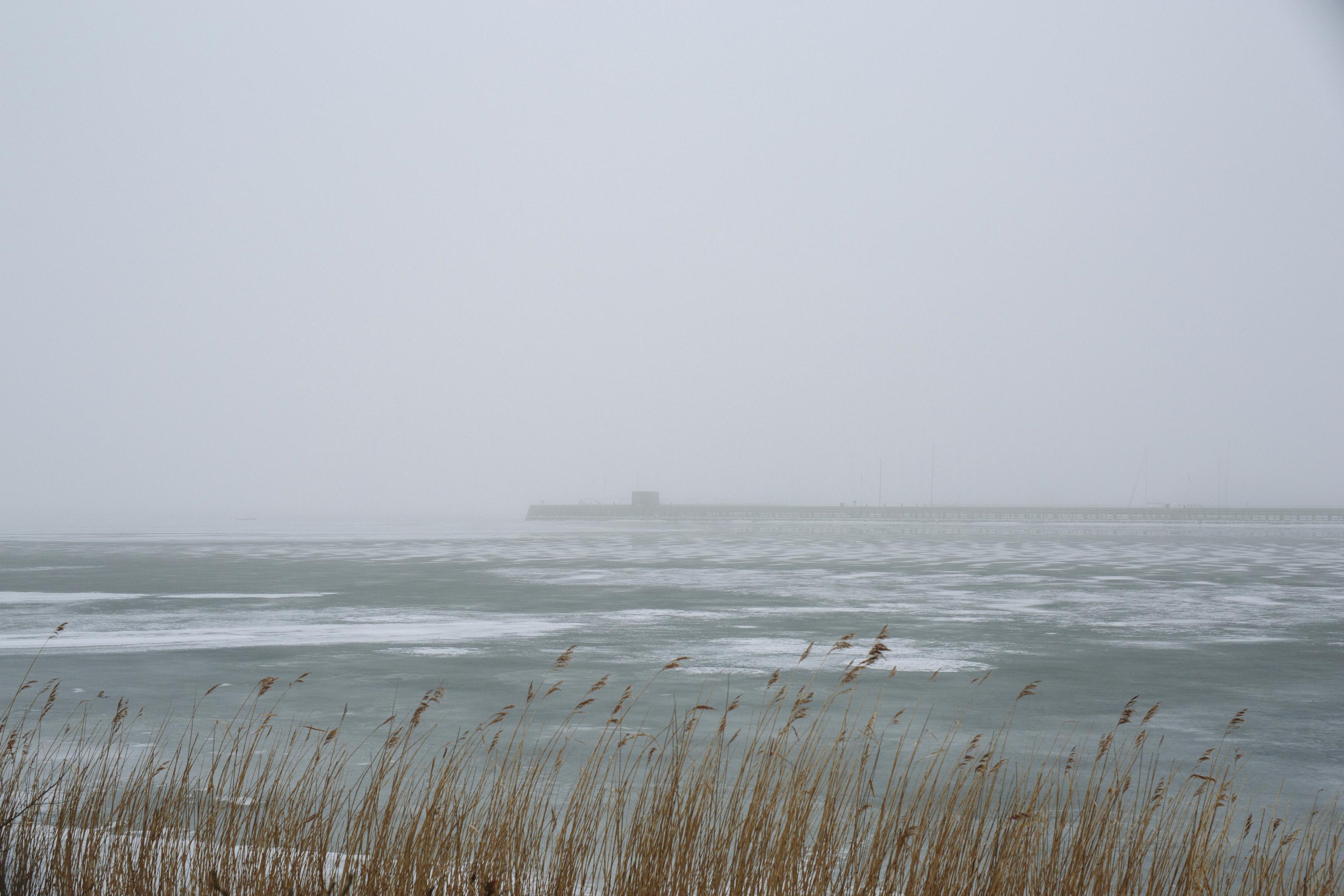 tåge_vejle_marts_fotograf Tine Hvolby_47
