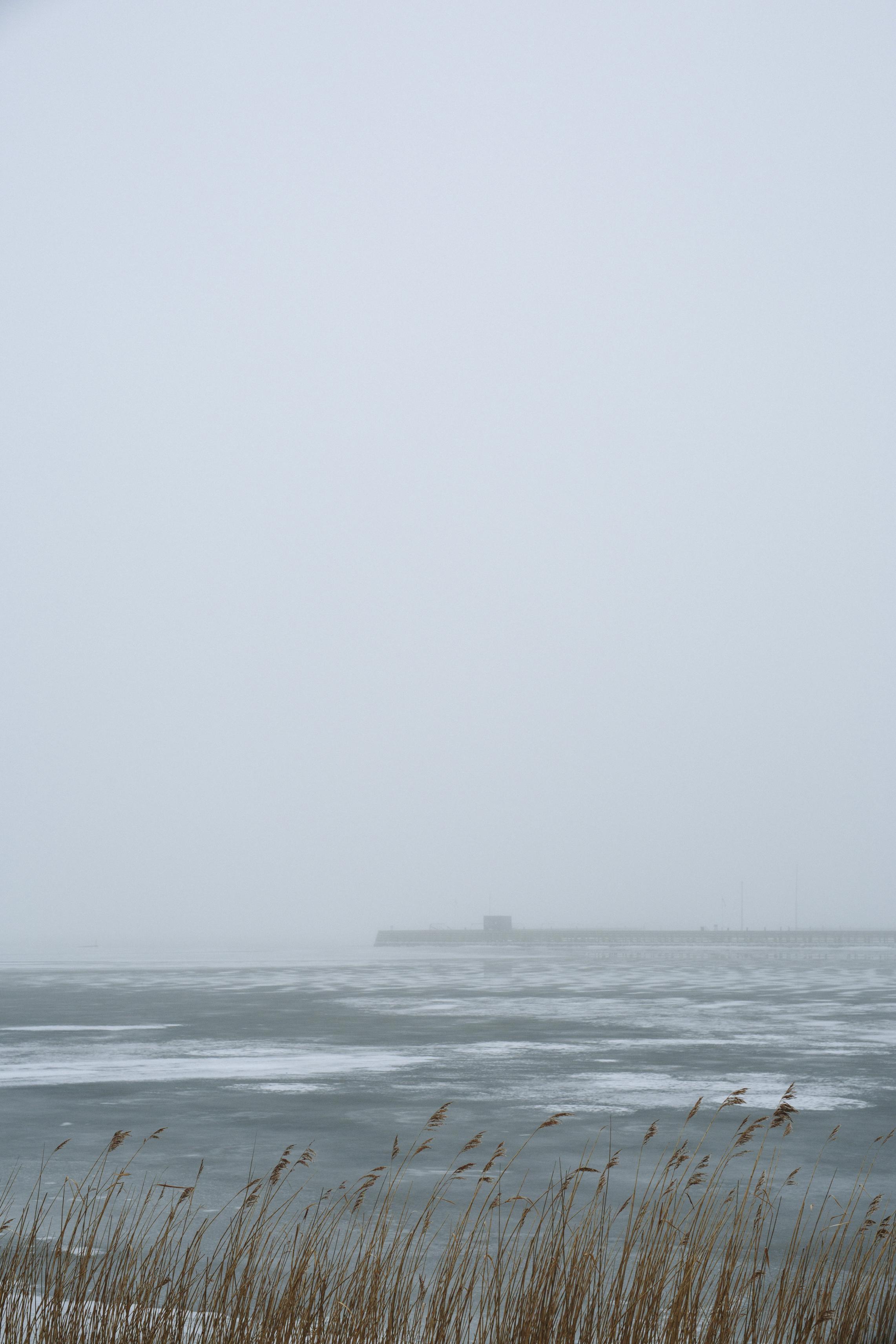 tåge_vejle_marts_fotograf Tine Hvolby_49